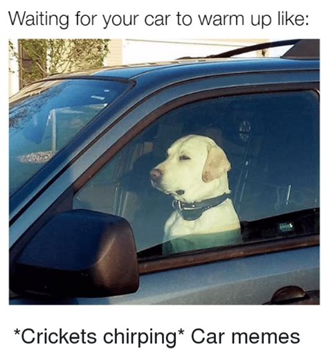 Crickets Chirping Meme - 25 best memes about chirp chirp memes