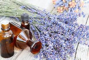 Lavendelseife Selber Machen : lavendel in der kosmetik lavendelkosmetik selber machen ~ Lizthompson.info Haus und Dekorationen