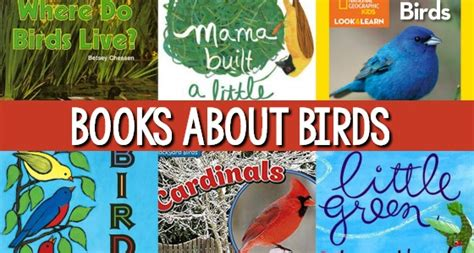 preschool bird books all about me books for preschool and kindergarten pre k 170