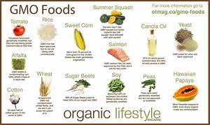 Genetically Modified Foods  U2013 Bioanalytical Blogshaala
