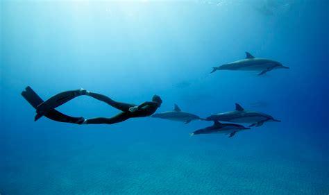 a single breath freediving