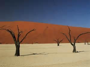 Sossusvlei Excursion | Namibia Tours & Safaris