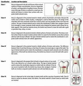 12  The Dental Examination