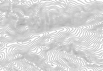 Lines Contour Vector Inkscape Editing Illustrator Jonas