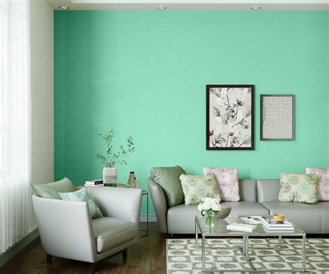 try surf green house paint colour shades for walls