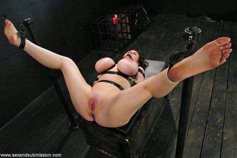 Daphne Rosen Stuffed In Washroom