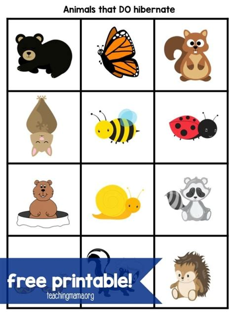 HD wallpapers letter search worksheets for preschoolers