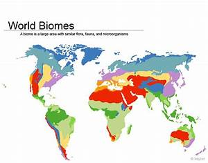 World Biomes Purposegames