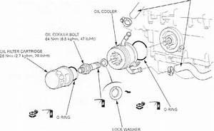Honda Cbr 600 F4i Pgm-fi System