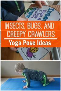 Insects  Bugs  And Creepy Crawlers Themed Yoga