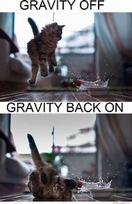 Funny Gravity Quotes