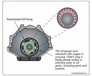 Symptoms Of A Transmission Oil Pump    Torque Converter