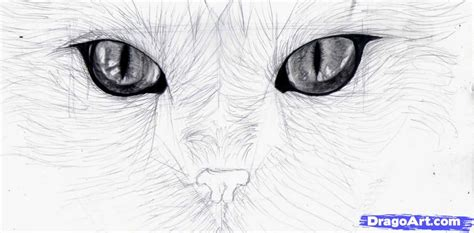 draw cat eyes step  step drawing sheets added