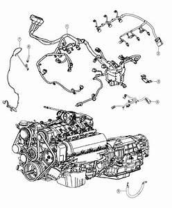 Dodge Durango Wiring  Injector