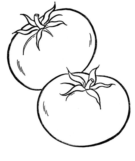 vegetable coloring pages images  pinterest