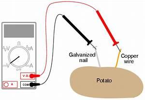 Make Your Own Potato Lightbulb