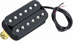 File  Evh Wolfgang Pickup Wiring Diagram