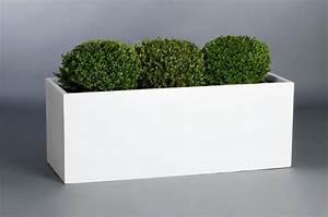 Www Blumenkübel De : blumenk bel pflanztrog pflanzk bel fiberglas maxi 120cm wei ~ Sanjose-hotels-ca.com Haus und Dekorationen