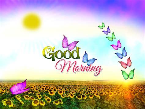 Morning Animation Wallpaper - morning wallpapers hd for desktop wallpaper