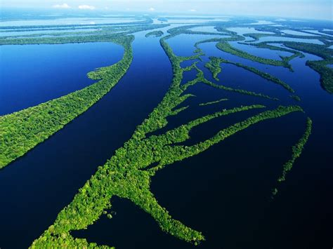 rios da amazonia igui ecologia