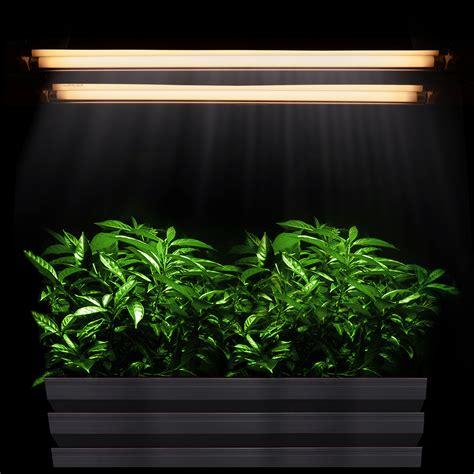 best grow lights for seedlings fluorescent grow lights why t5 lights are the best grow