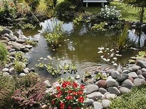 Bassin pour jardin japonais conseils pour crer un petit for Amazing creation bassin de jardin 0 la passion du poisson un bassin de jardin dexception