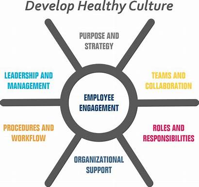 Culture Healthy Develop Consulting Organizational Continuity