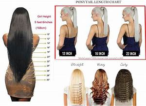 Ponytail Length Chart