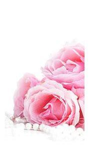 Beautiful pastel pink roses bunch and elegant bridal ...