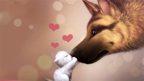cat  dog kissing wallpapers hd desktop  mobile