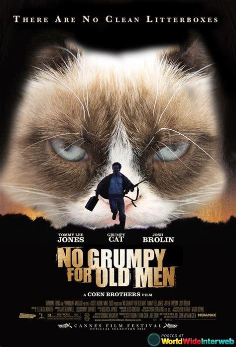 cat posters grumpy cat posters grumpycat fanart grumpy cat