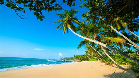 arugambay exoctic beaches sri lanka sandy beaches blue