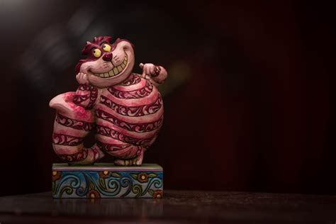 images animal cute statue darkness smile alice
