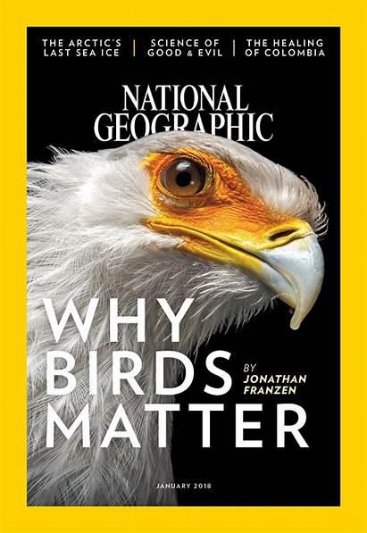 Magazine Geographic National January Birds Why Nationalgeographic