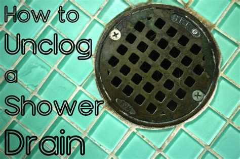 clear  clogged shower drain  methods dengarden