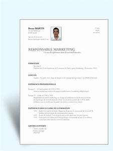 Modèle CV basique CV simple