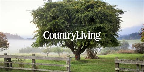 counrty living country decor craft ideas comfort food and antique appraisals country living magazine
