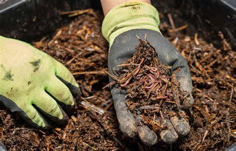 ekoloska vzgoja organska gnojila za list cvet  plod