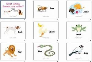 DIY Flashcards #21: Animal Sounds