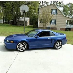 2003/04 Ford Mustang SVT Cobra   Mustang, Ford mustang, Bmw