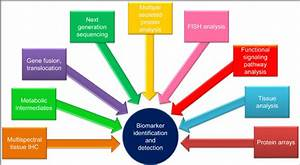 Techniques used for biomarker identification and detection ...
