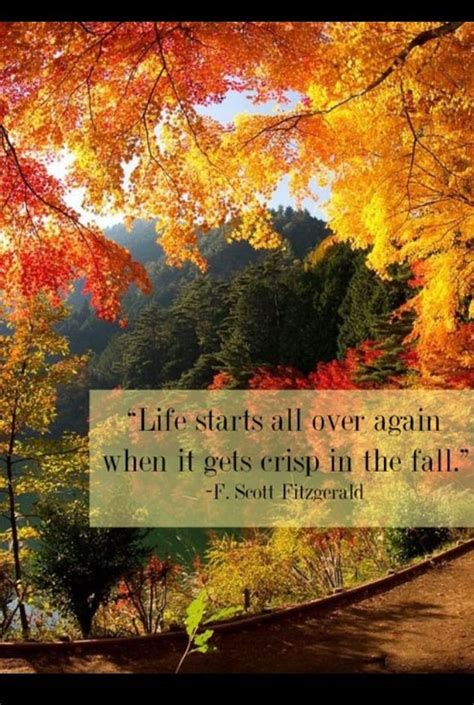 autumn quotes fall quotes words pinterest