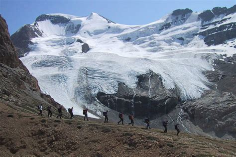 mount athabasca climb guided mountaineering trips