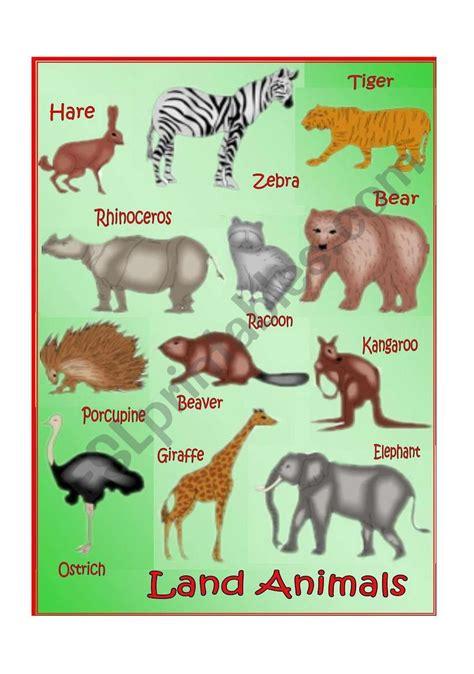 english worksheets land animals