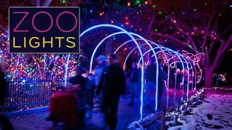 denver zoo lights 2014