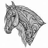 Coloring Premium Complex Horse Vector Copy sketch template