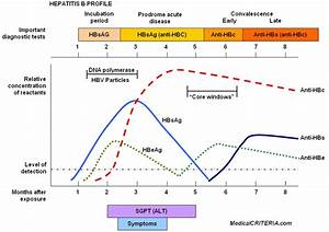 human biology - If fever is a natural immune defense, why ...