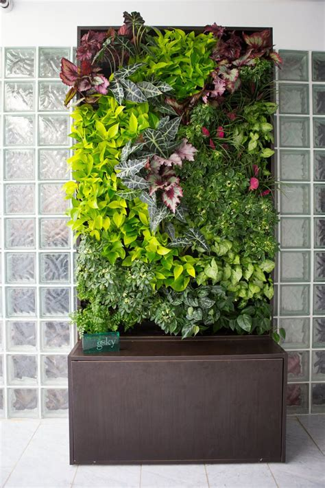Plants Used In Vertical Gardens by Smart Wall 174 Cabinet Vertical Gardening Vertical Garden