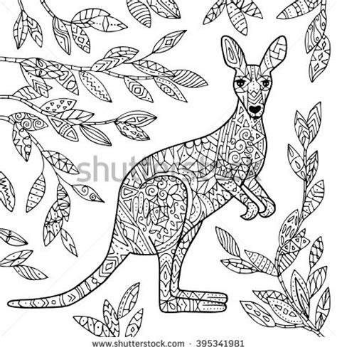 vector kangaroo illustration adult coloring page stock