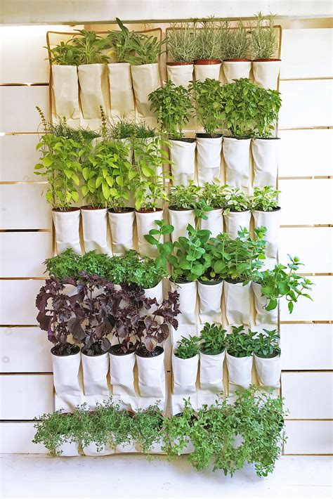 12 Diy Gardening Ideas